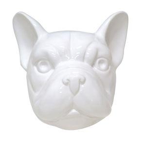 Kop Franse Bulldog Glanzend Wit