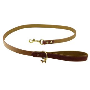 collar leash harness
