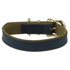 Basis halsband Blauw